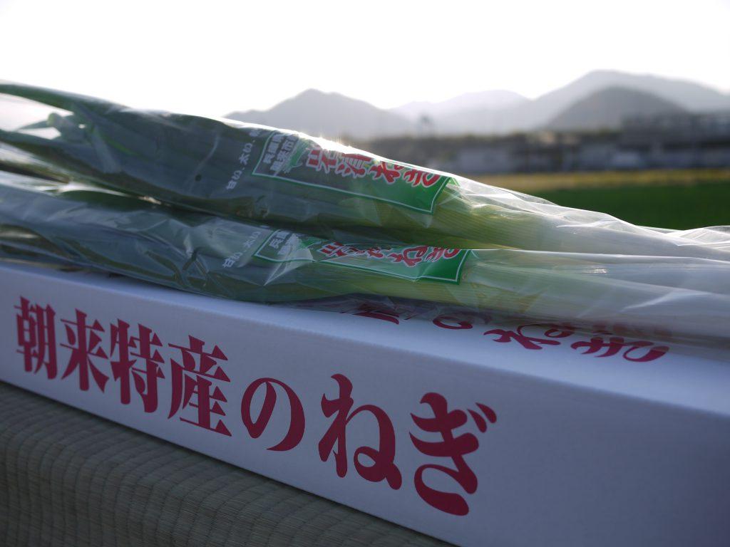 白根も青葉も柔らかくて甘い岩津ねぎ。和田山の澄んだ空気と水のもと、今日も丁寧に生産しています!