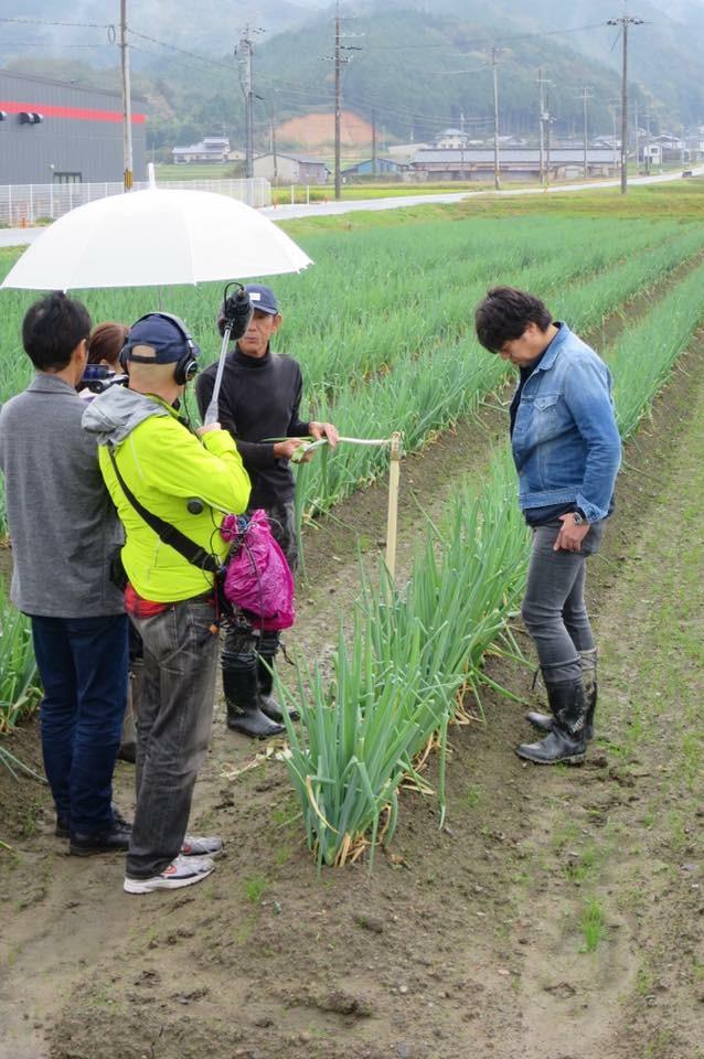 山下春幸氏、クロスロードの取材にて和田山のNOUEN圃場に岩津ねぎを見に来られました。